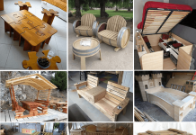 Ted's Woodworking Projects