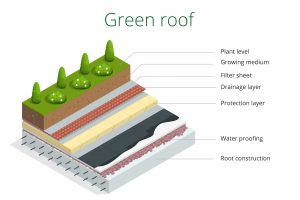 Green Roof Layers - TAG Level