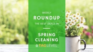 TAG Level - Spring Cleaning