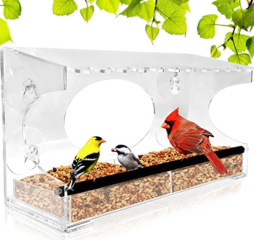 Nature Gear XL Window Bird Feeder - Extended Roof - Steel Perch - Sliding  Feed Tray Drains Water - See Wild Birds Like Finches, Cardinals and