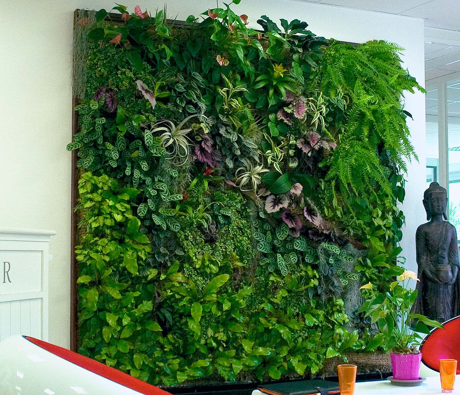 TAG Level - How to Grow a Vertical Garden